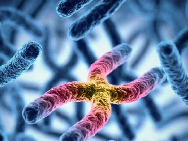 Test di ammissione 2019: come studiare biologia