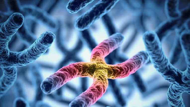 biologia test medicina e professioni sanitarie