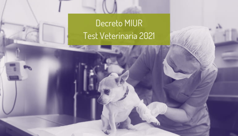 decreto test veterinaria 2021